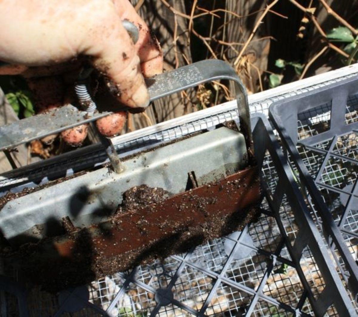 making soil blocks