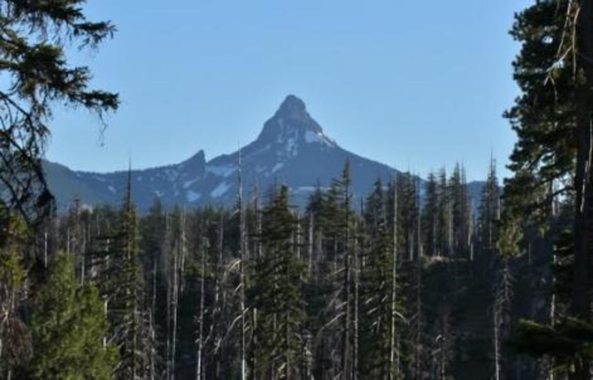 Mt Washington is weathered and holds snow much of the year. Trees do not grow on the peak. Black Butte is covered with trees to the top, and shows no sign of erosion. Both peaks are visible from the highway east of Santiam Pass in Oregon.
