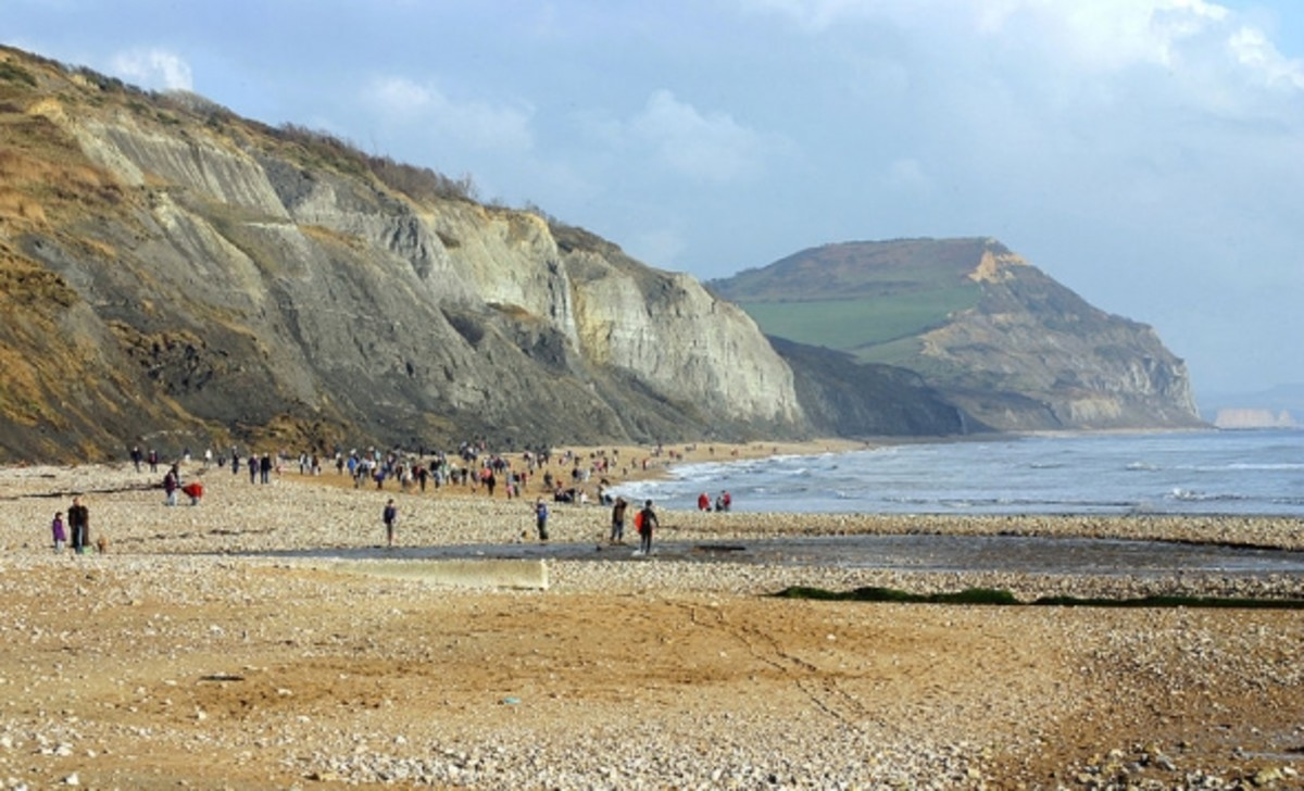The Jurassic Coast at Charmouth, Dorset, England where Mary Anning discovered large reptiles in the shales of Black Ven; Golden Cap in the near distance