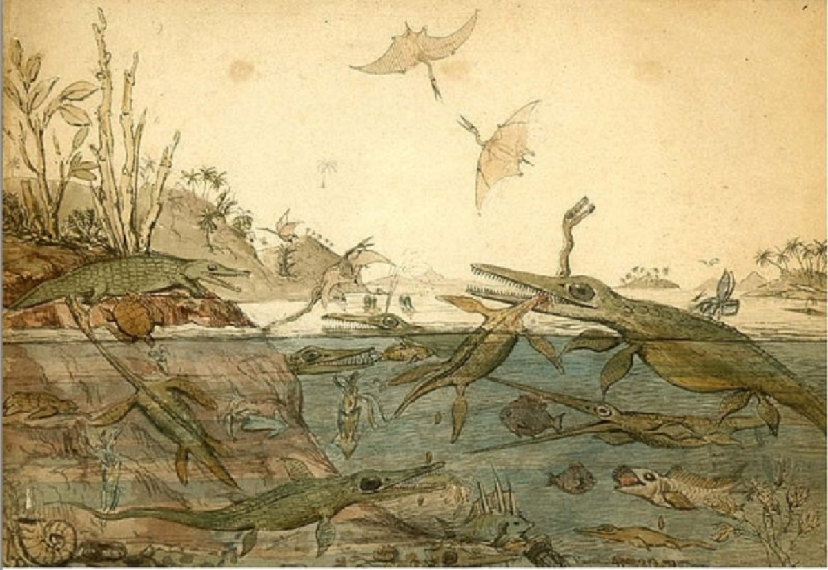 Duria Antiquior, 1830, is the famous watercolor painted by Henry de la Beche depicting life in ancient Dorset based on fossils found by Mary Anning