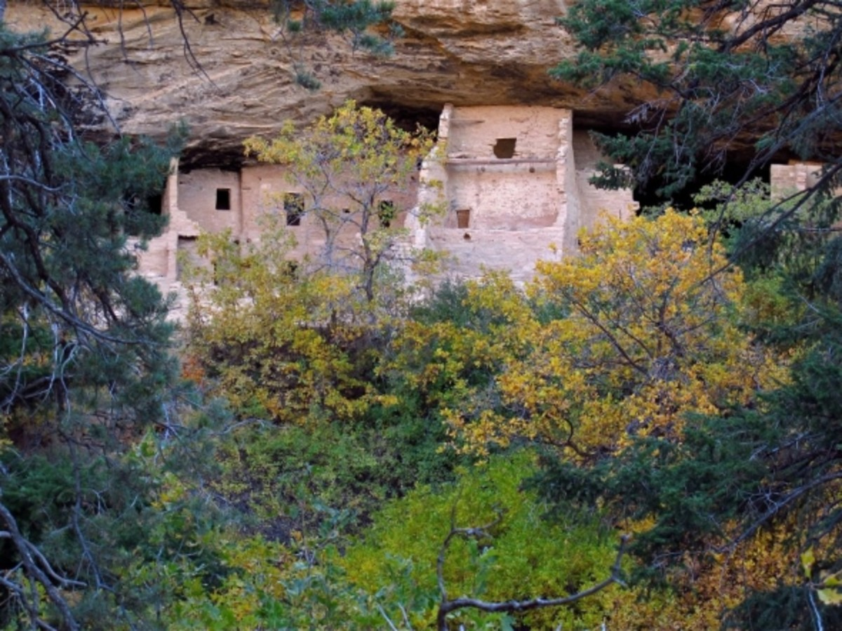 Spruce Tree House, Mesa Verde National Park by Gene Balzer