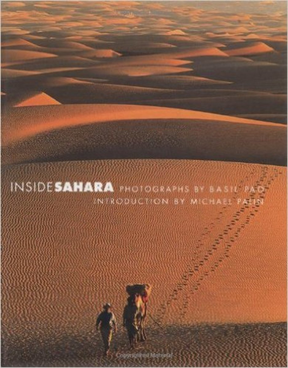 Inside Sahara by Basil Pao