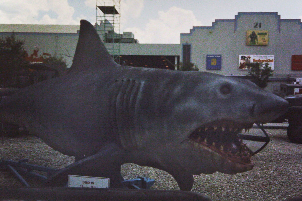 Also not Bruce. This is the full scale shark from the notorious stinker JAWS: The Revenge, the fourth and final of the JAWS films. He lived on the Universal Studios Florida backlot for years, but was eventually carted off to a landfill. Poor guy.