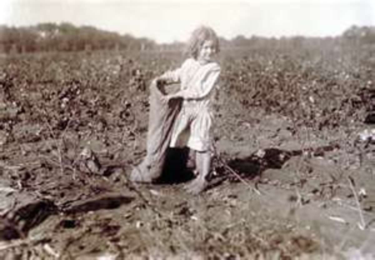 picking-cotton-in-the-deep-south-when-i-was-a-child
