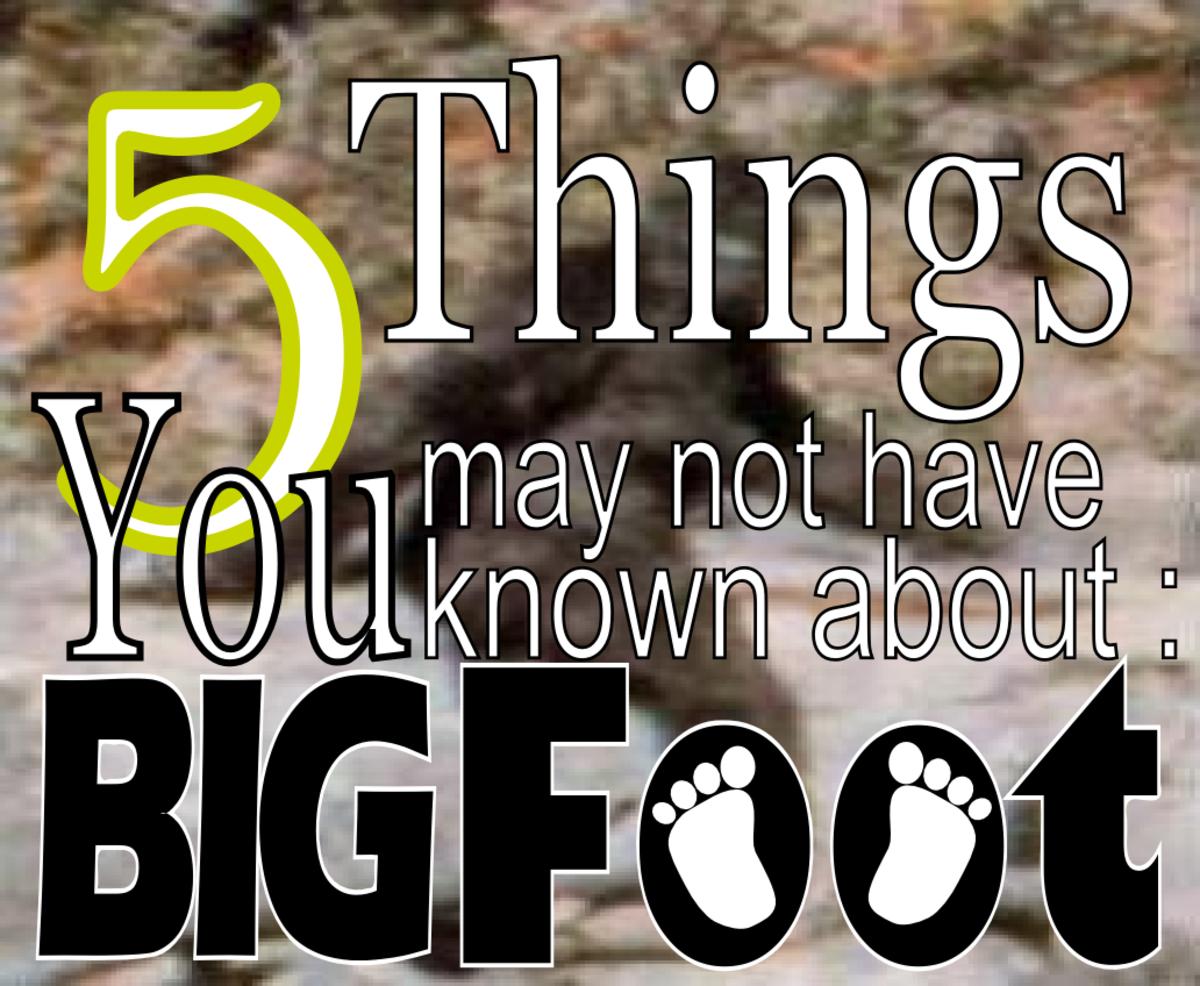 Bigfoot Facts