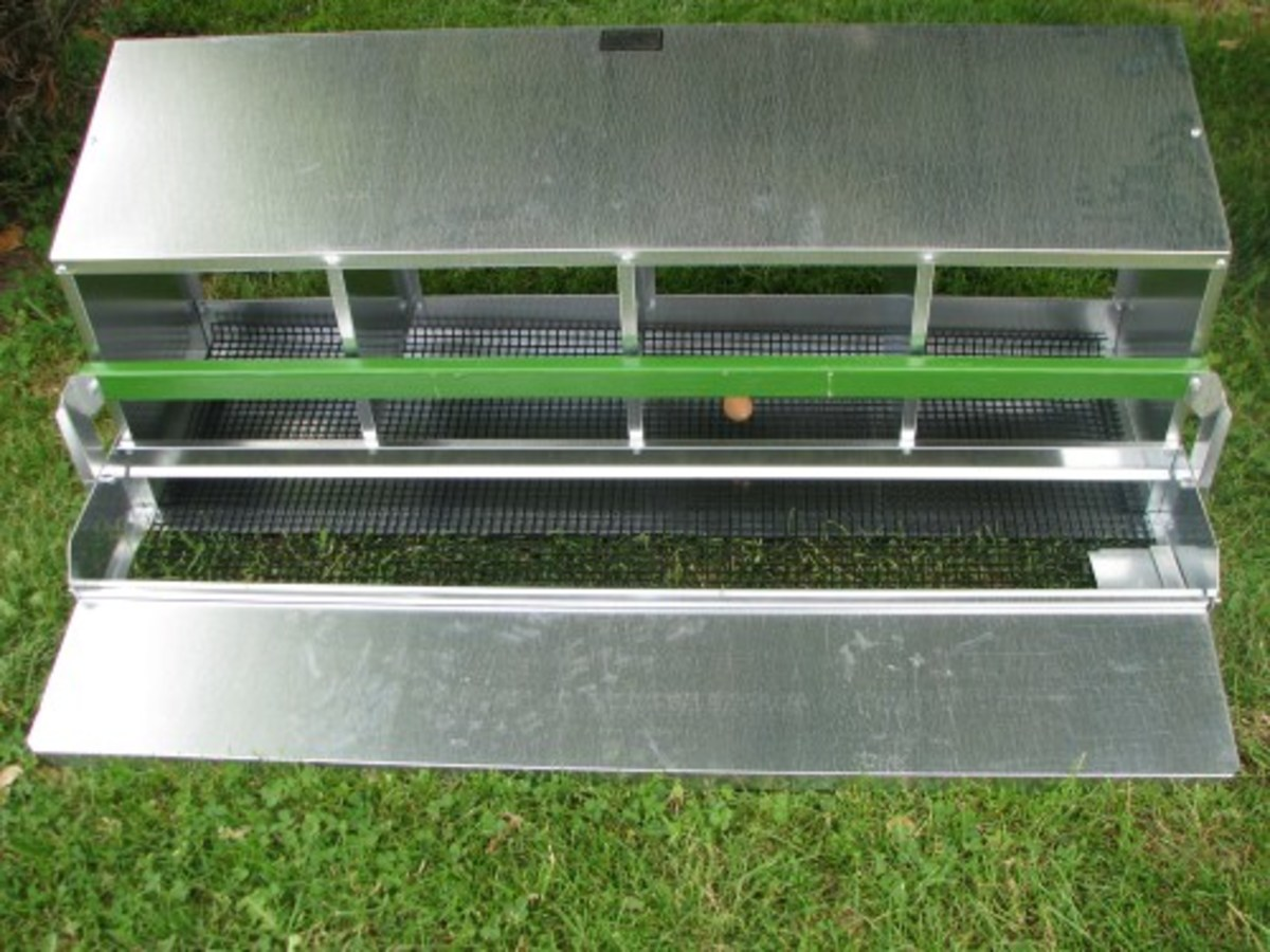 Four Compartment Rollaway-Nest with egg collection tray open.