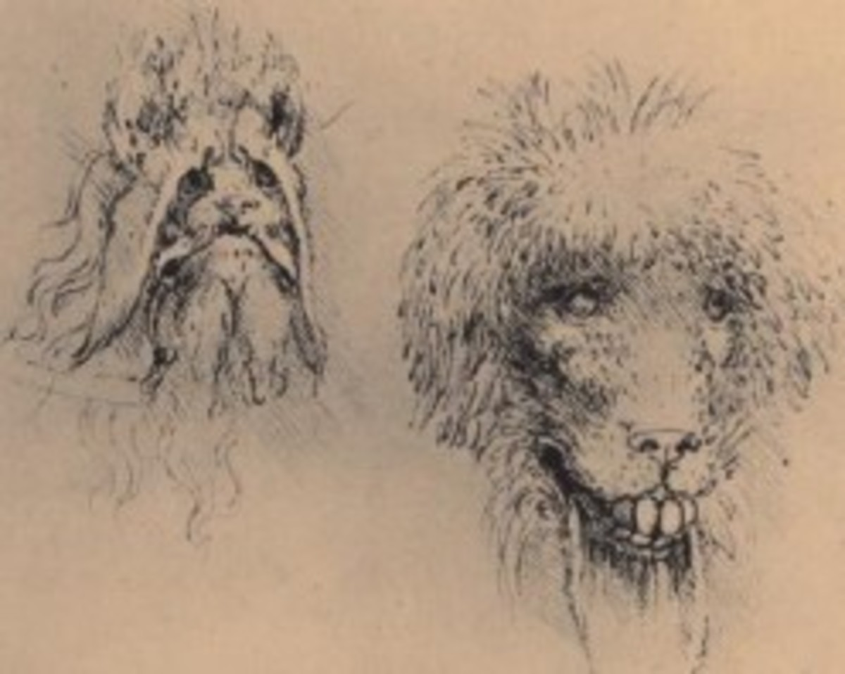 Sketches for masks by Leonardo - when turned upside down, the dog in the upper left becomes a bat.