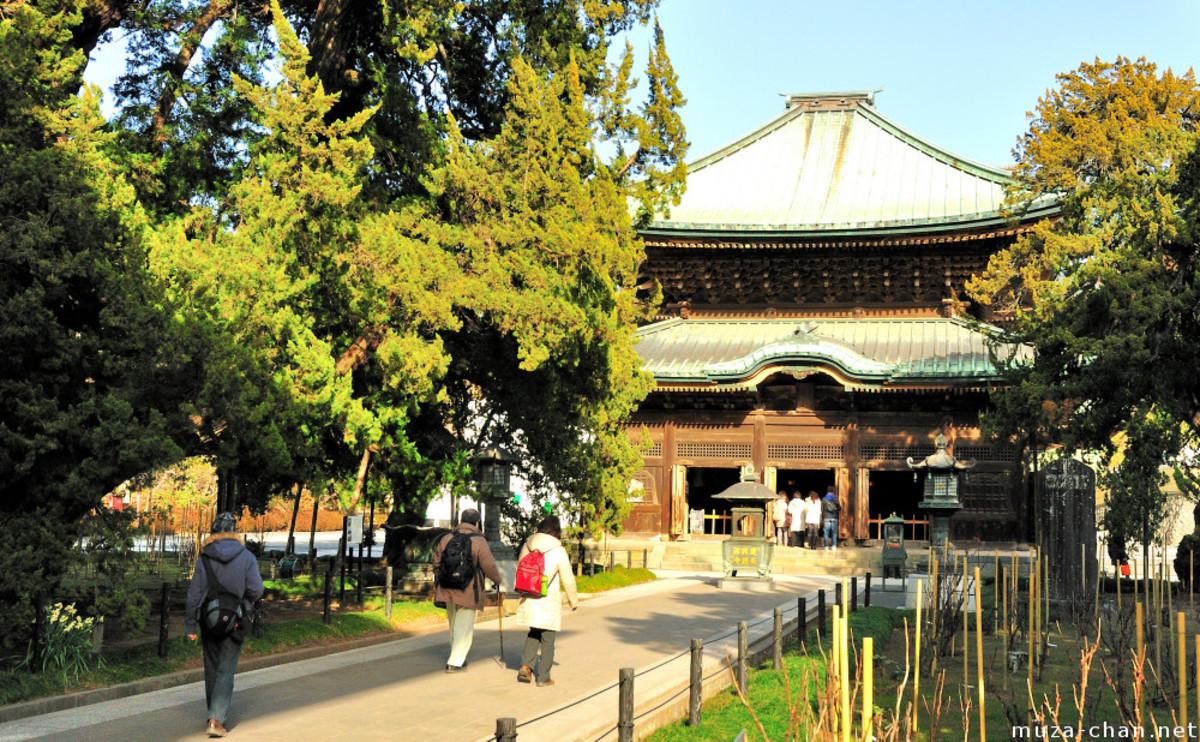 Juniper trees and Buddha Hall in Kenchoji Temple, Kamakura