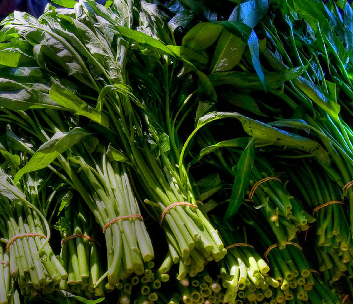 Fresh Ong Choy/Water Spinach