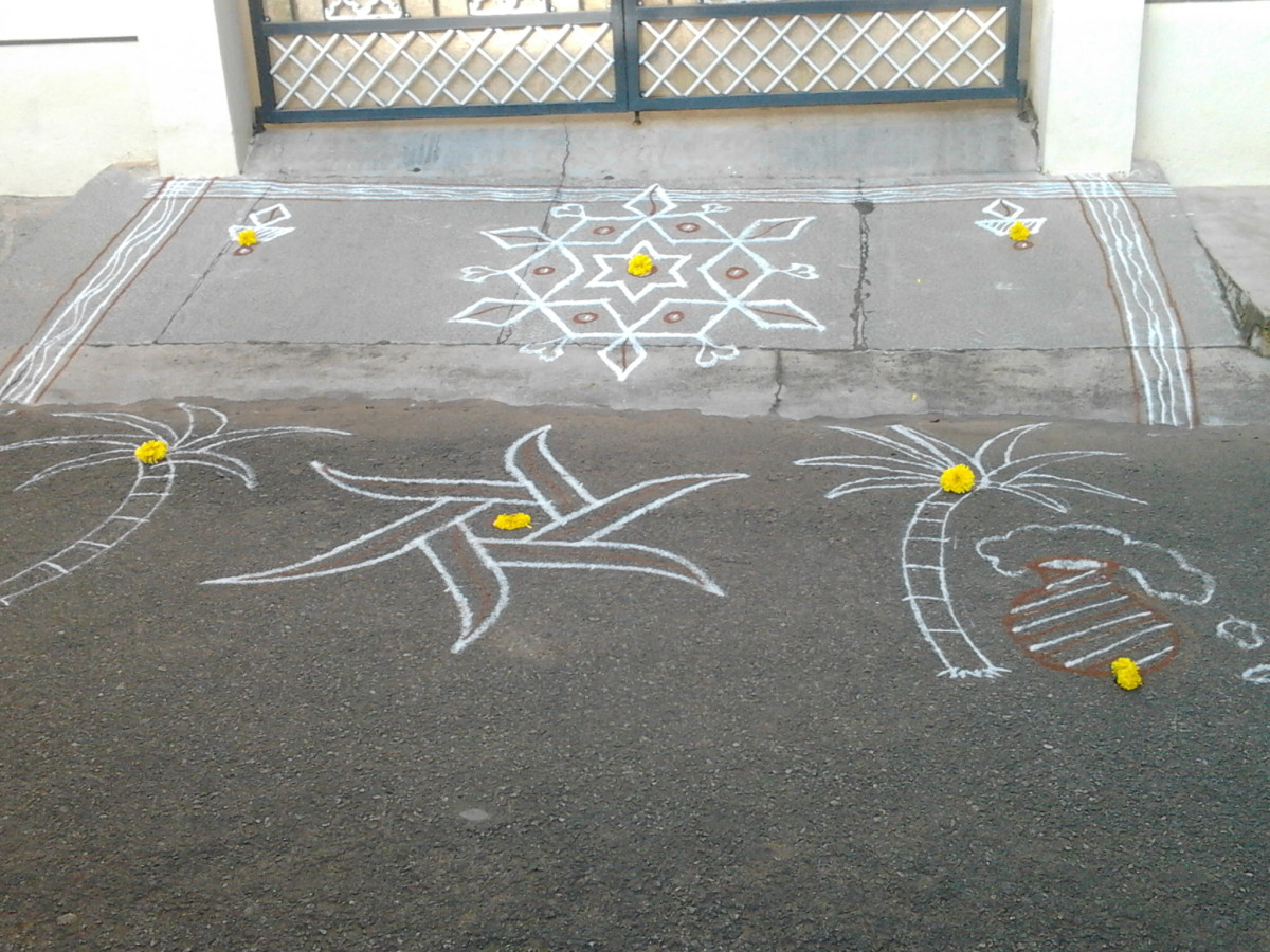 A cluster of simple white line rangolis decorated with marigolds. Sugar canes again.