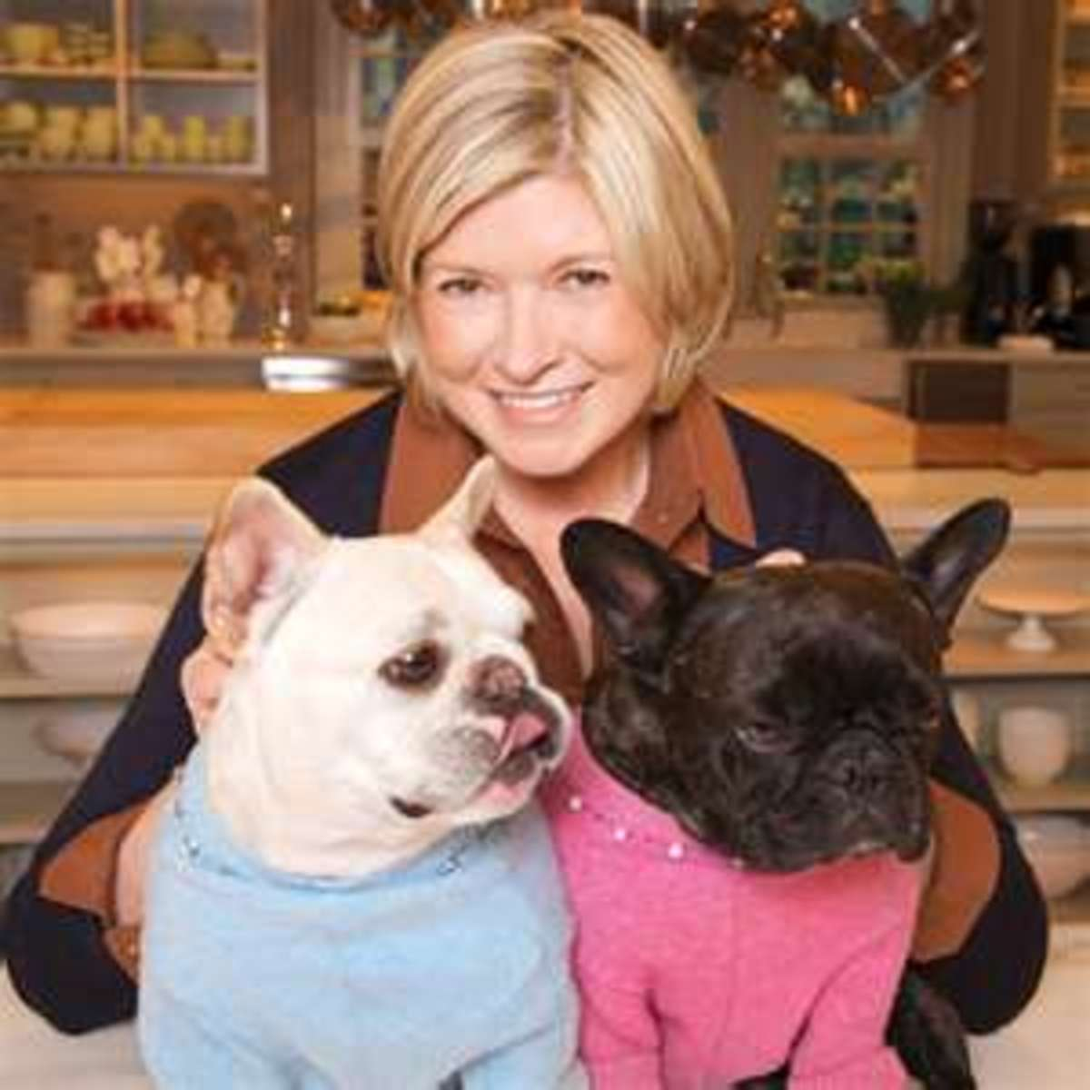 Martha with her two  French Bulldogs, Francesca and Sharkey