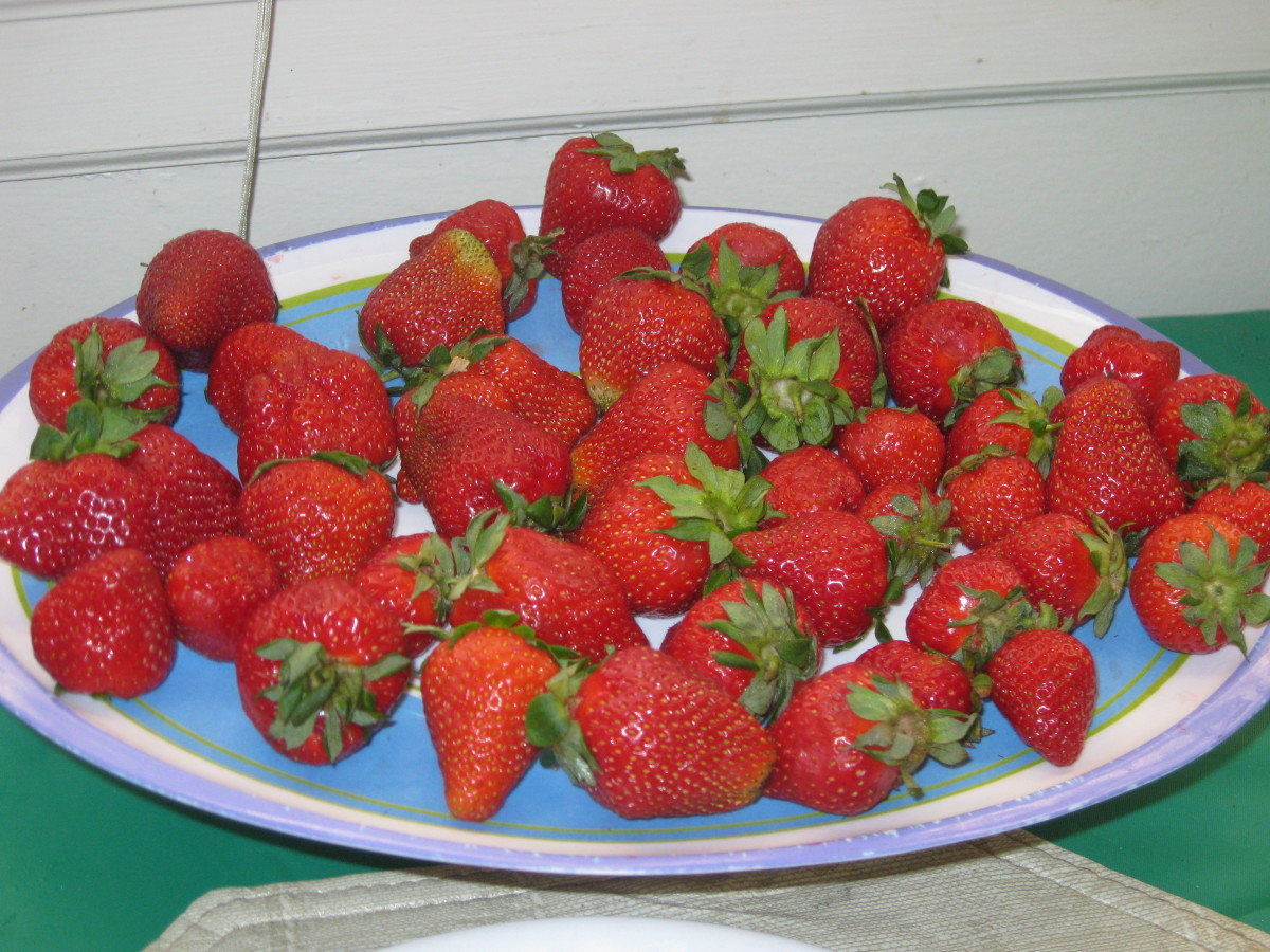 Sweet, summer strawberries-a real treat.