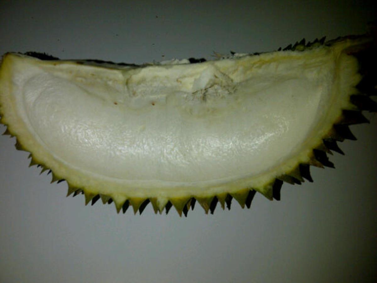 a Durian husk.
