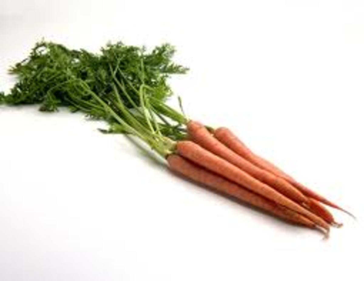 After finding a bunch of carrots on the roadside while watching the Easter Fires, I'm a believer!