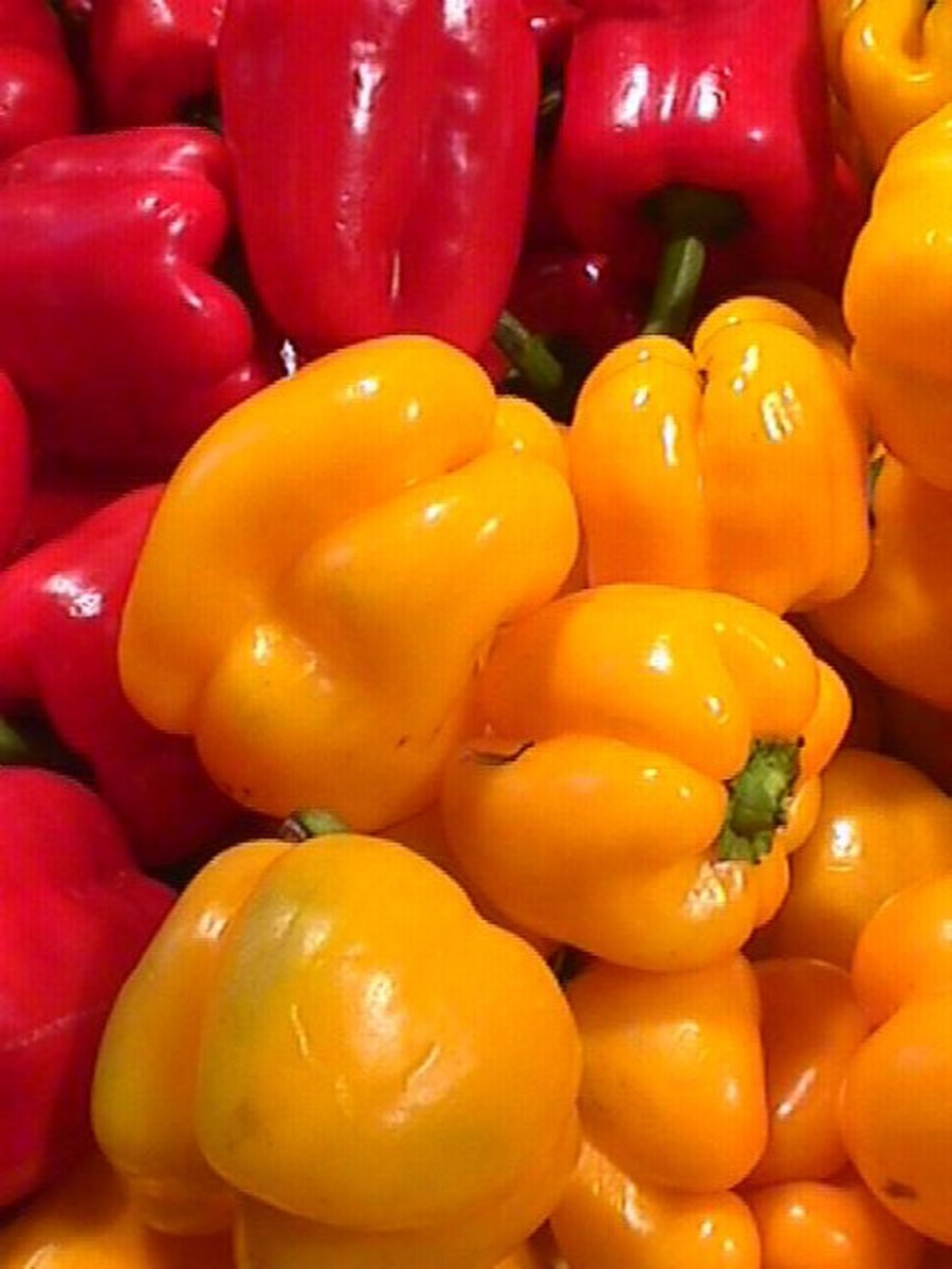 Yellow and Red sweet Peppers