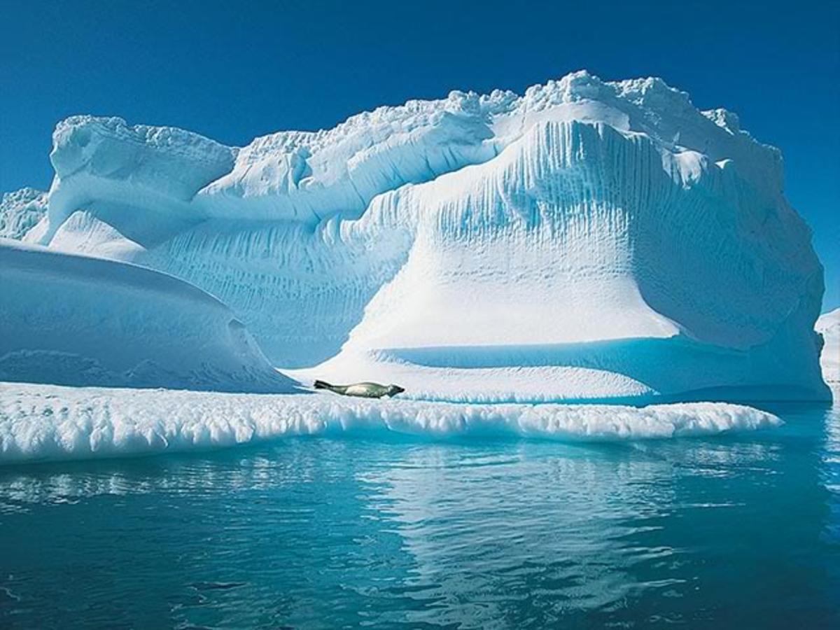 No Ice Bergs in the Sea