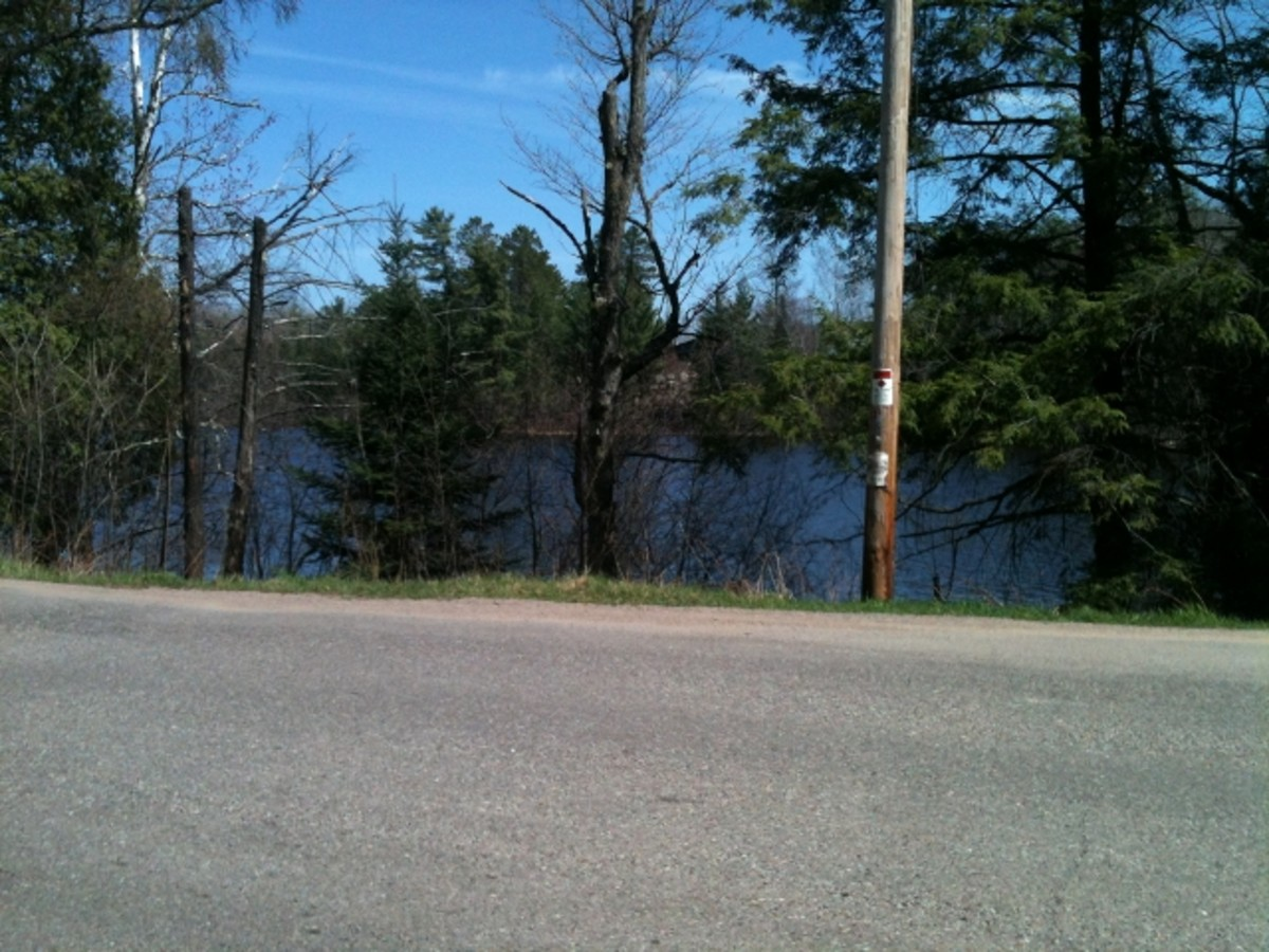 Wisconsin River across the road. Artesian Well Our Drinking Water
