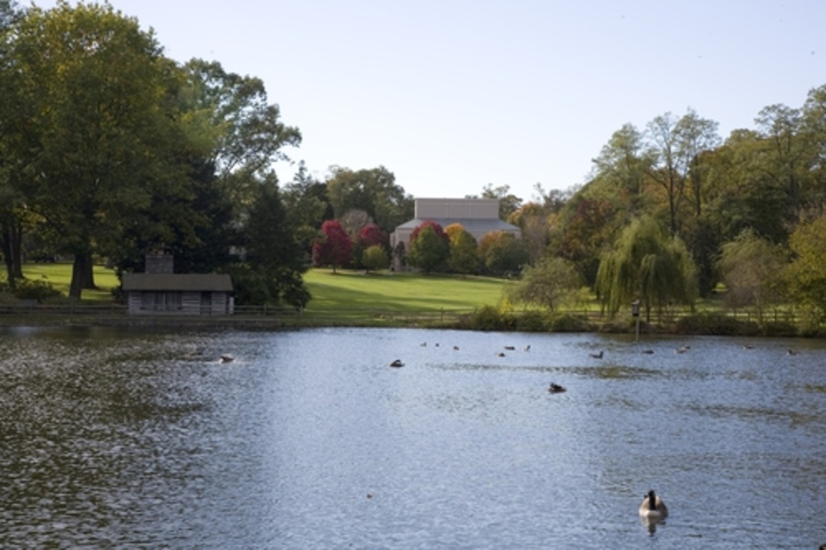 Duck Pond (general view), Haverford College
