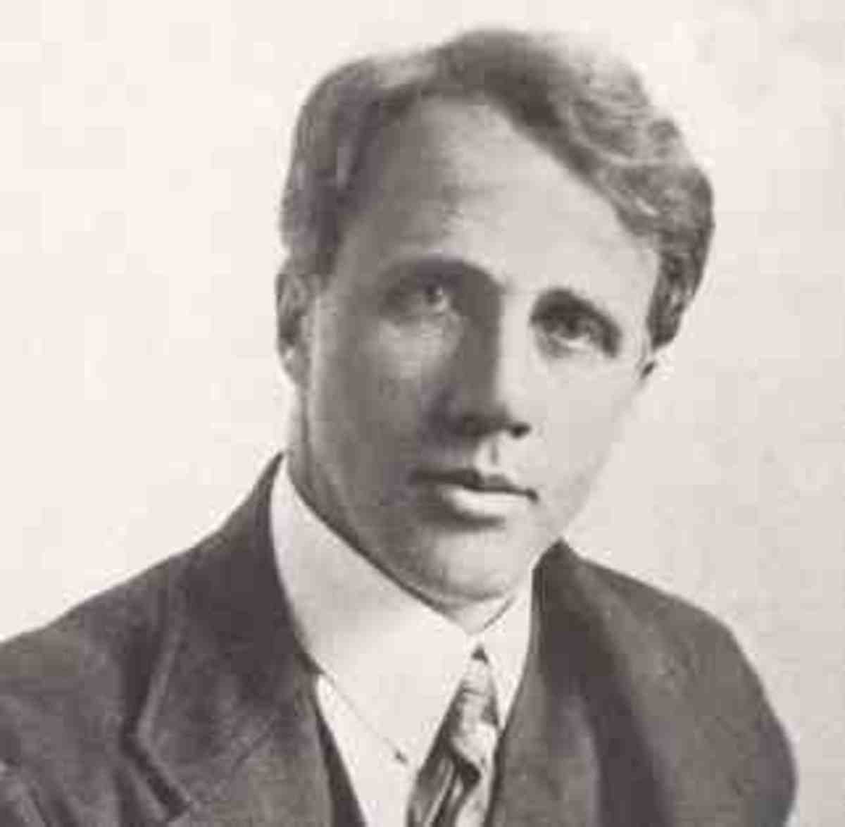 frost sound of sense essay This lesson discusses 'sound and sense' which is a portion of the 'essay on criticism' by alexander in sound and sense robert frost's nothing gold can.