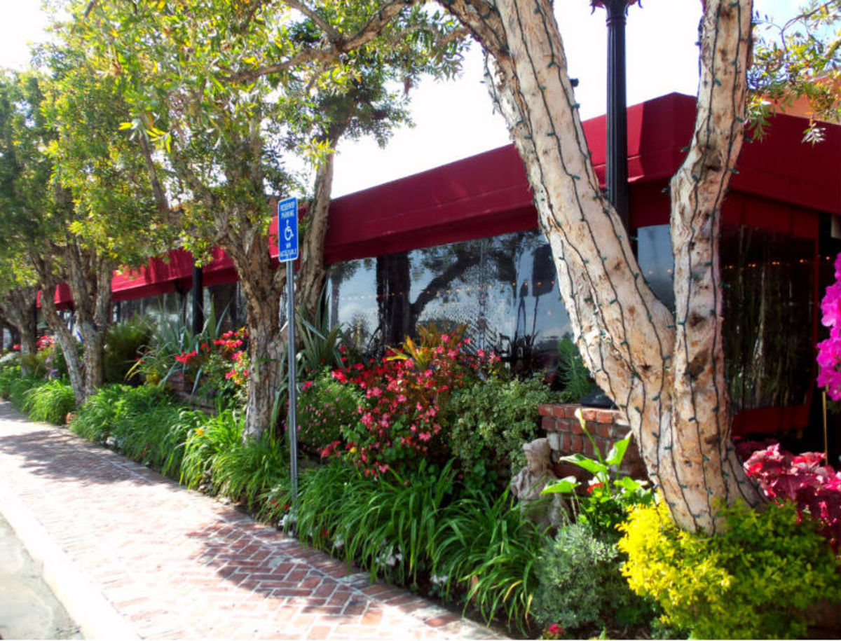"- Photo Capture - Exterior view of the indigenous flora & greenery combination landscaping which tenderly rides up & caresses the ""Sun-room"" walls situated adjacent to the front entrance of The Original Fish Company Restaurant -"