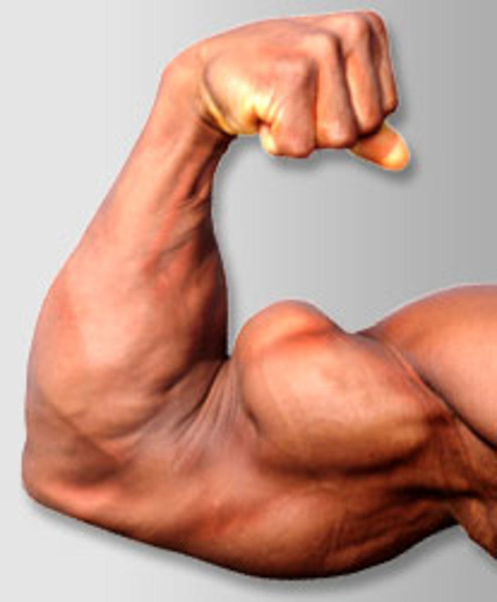 Secrets to Building BIG Arms