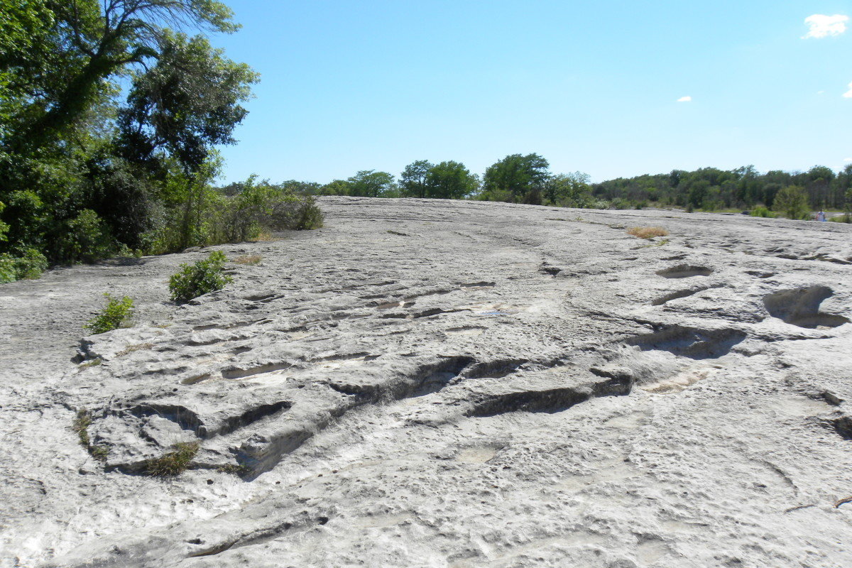 Mckinney Falls State Park Limestone shelf - Austin TX