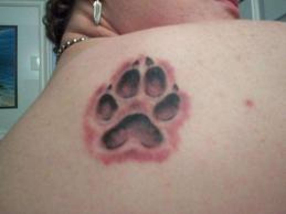 paw-print-tattoos-and-designs-paw-print-tattoo-meanings-and-ideas