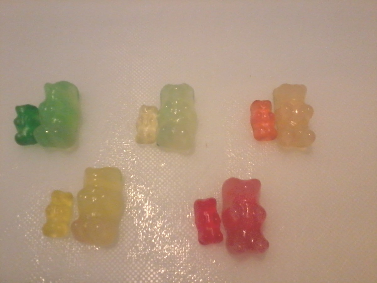 an essay on gummy bears Question: what do you think will happen to a gummy bear when you put it in water over night research hypothesis: the gummy bear will dissolve in the water due to the fact that most gummy bears are made out of pure sugar.