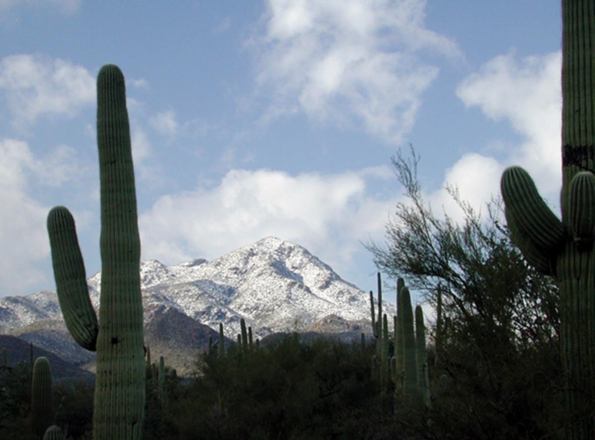 near Tucson, Arizona