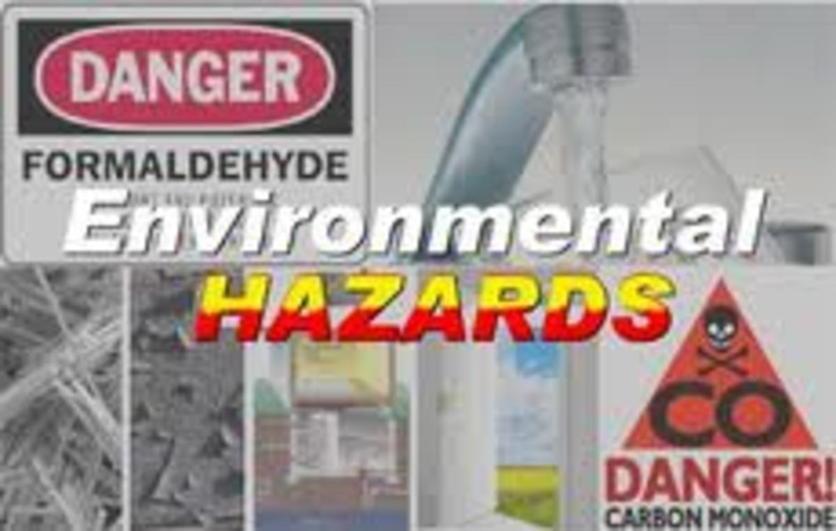 Four Categories of Environmental Hazards