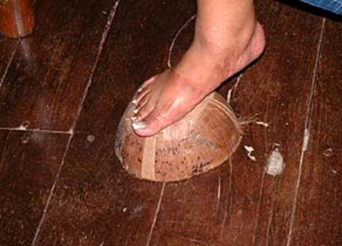 Coconut husk used to shine the floor either with or without using floor wax.