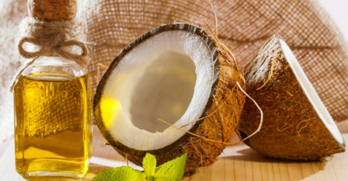 uses-of-coconut-tree-from-roots-to-fruits