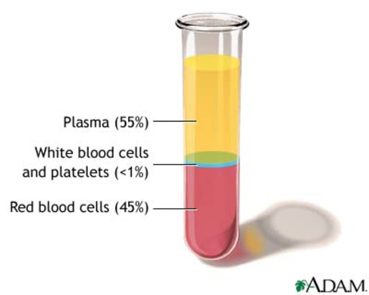 Facts about Blood/Blood Cells Facts: Function of whole Blood, function platelets, function red/white blood cells