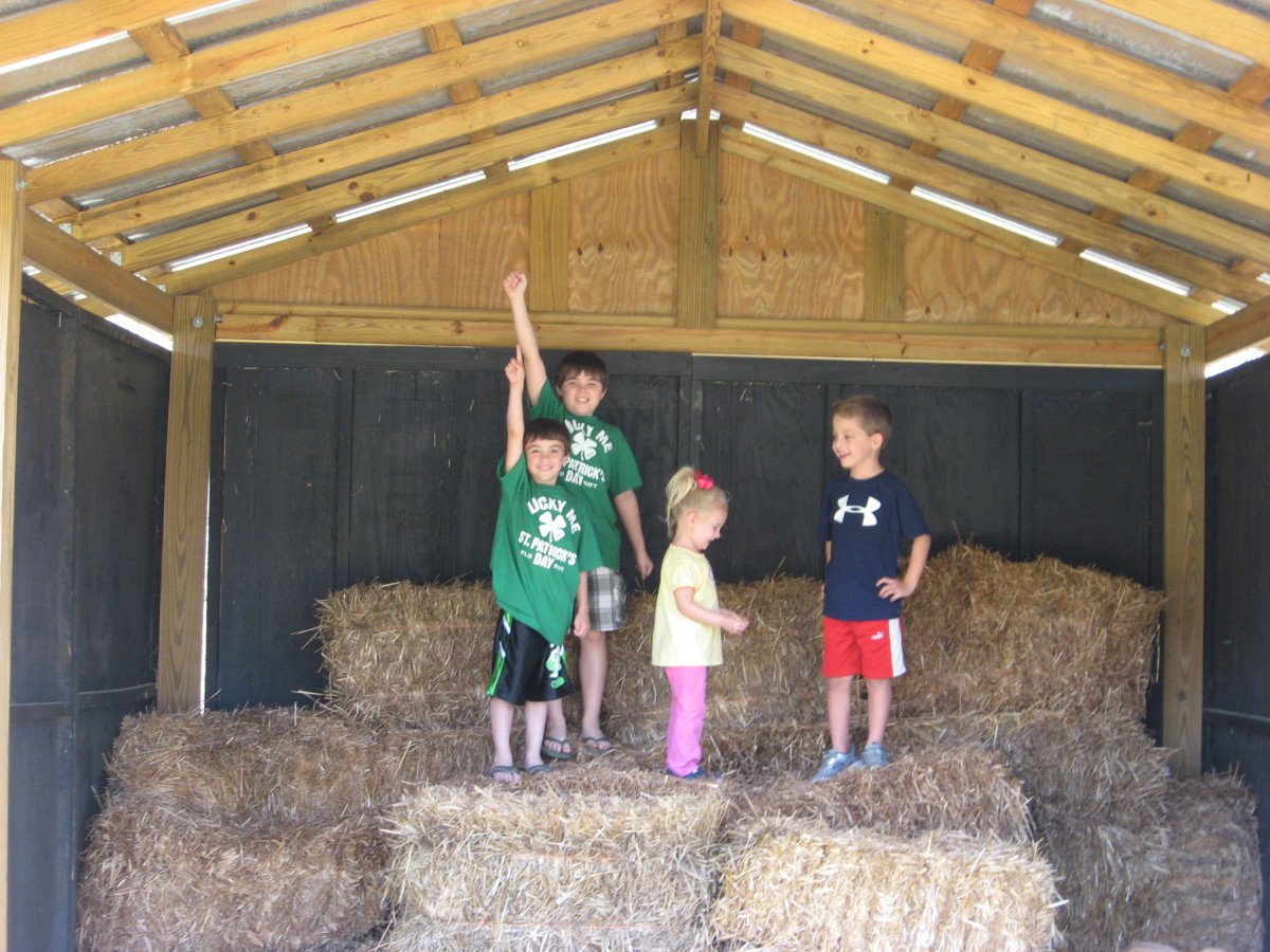 We loved playing in the hay!