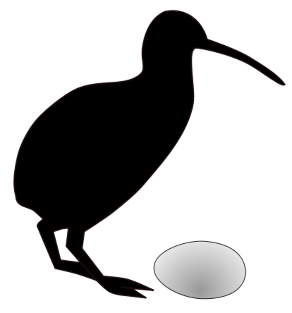 This picture shows just how large the kiwi's egg is in relation to the bird.