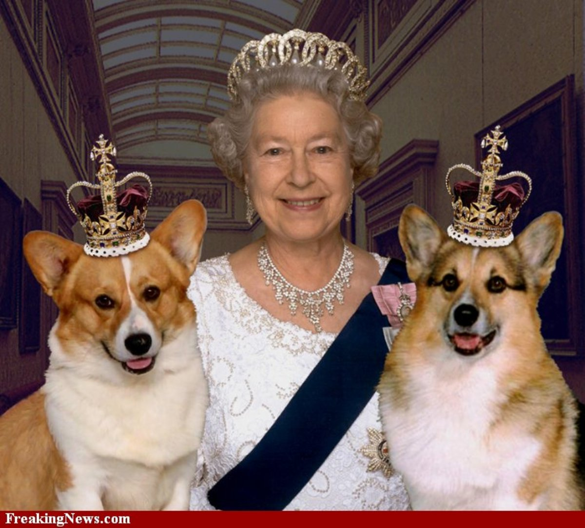 Her Majesty And The Royal Corgies.