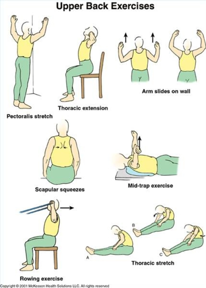 Note: Many exercises can be performed while sitting in a chair and be just as effective as floor exercises when properly executed.