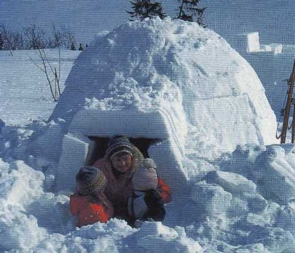 Igloos are a natural in the far north, in high mountain glaciers and in the far south. They can be made large enough for several people and can be made very quickly. They can also be surprisingly warm inside.