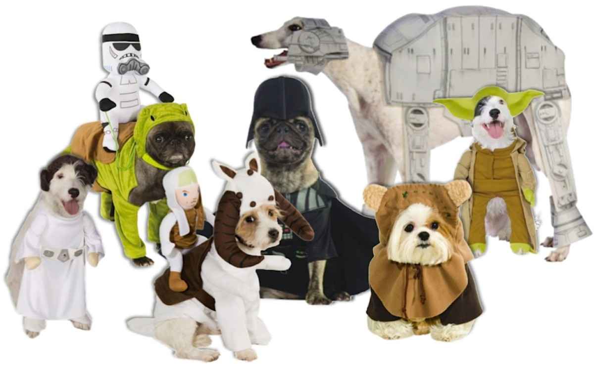 Canine Cast of Star Wars From left to right: Princess Leia, Dewback Dog, Tauntaun, Bantha (not shown), Dog Vader, AT-AT Walker, Ewok, and Yoda. All available at