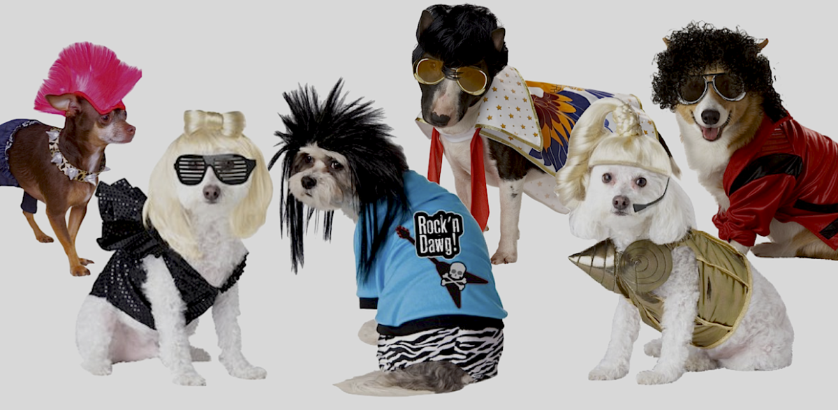 Rubies Punk Rocker, California Costumes Lady Dogga,  Rubies Rock Star, Pup-A-Razzi Rock N Roll King, and Blonde Ham-Bition Pop Queen, Pet Pop King. All available at