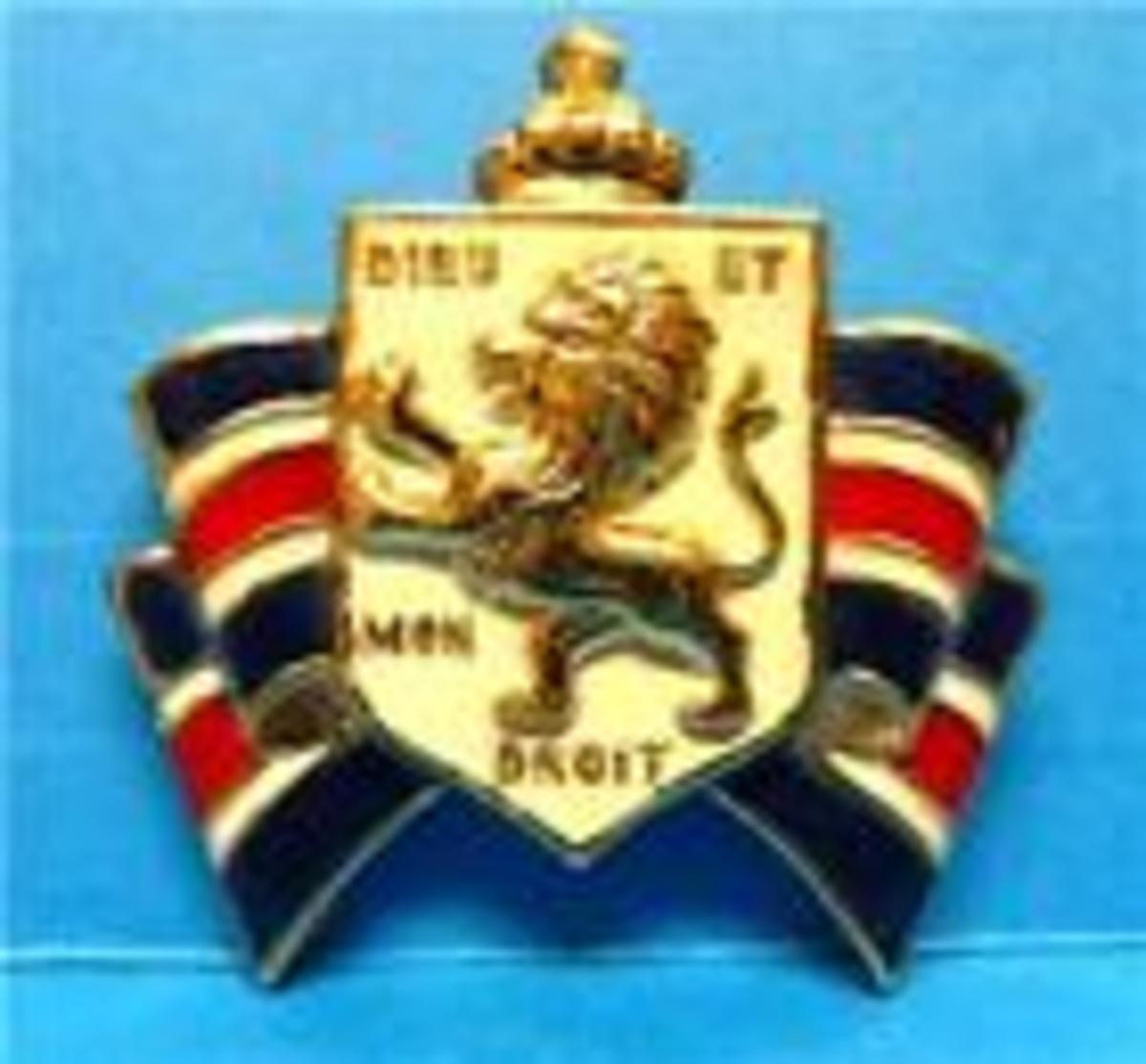 Bundles for Britain pin