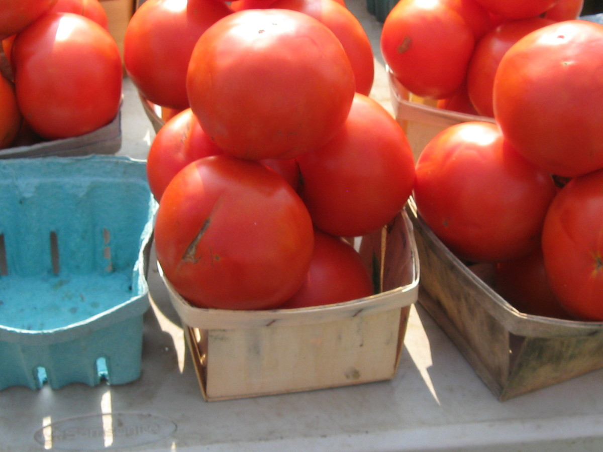 tomatoes from the farmer's market