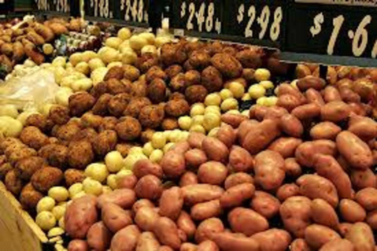 Different Types of Potatoes - Blue Potato, Red Sangria, Yukon Gold, and Fingerling Potatoes