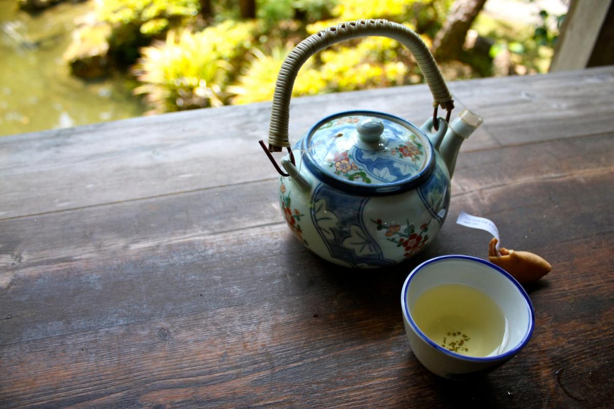 how-to-make-safe-healthy-pine-needle-tea
