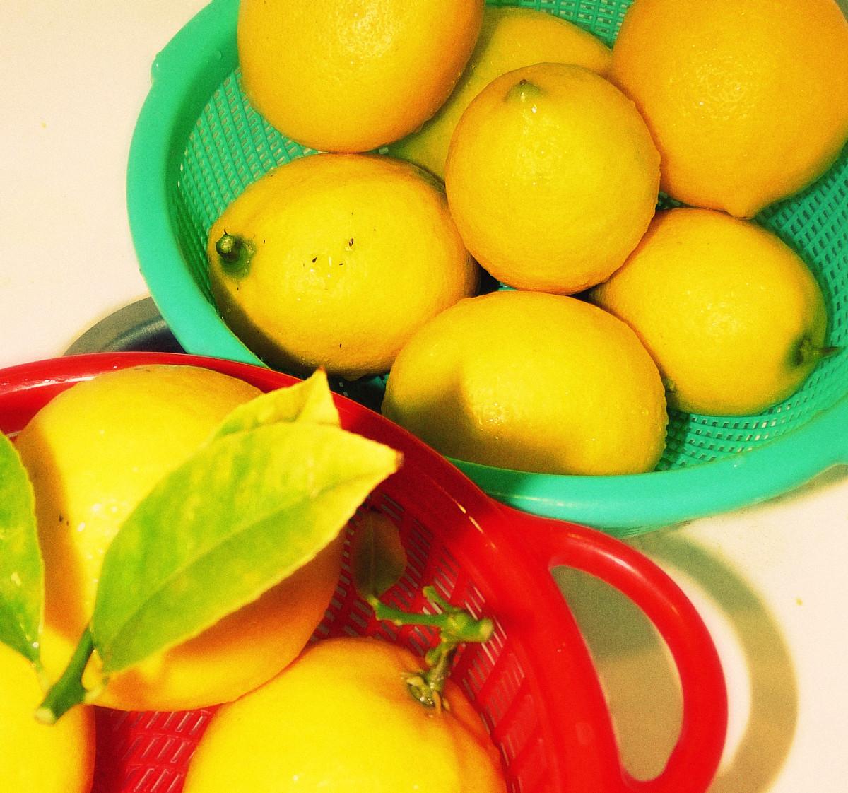 Healthy, freshly picked lemons