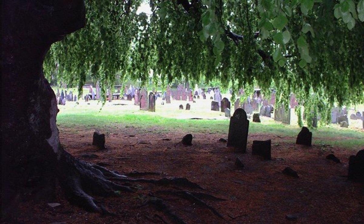 Ye Antientist Burial Ground