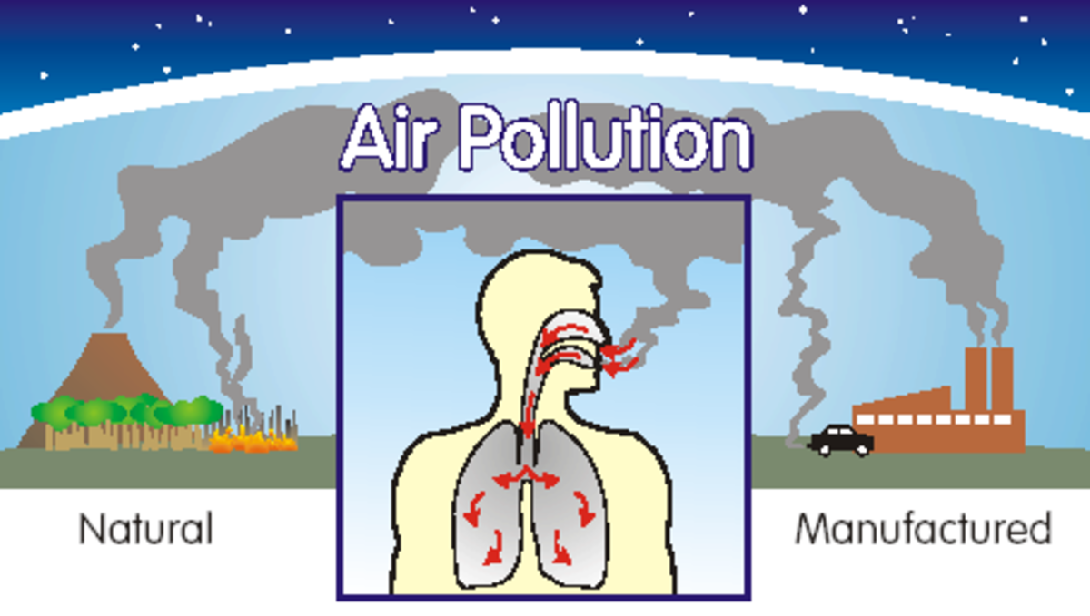 smoke-belching-and-the-environment