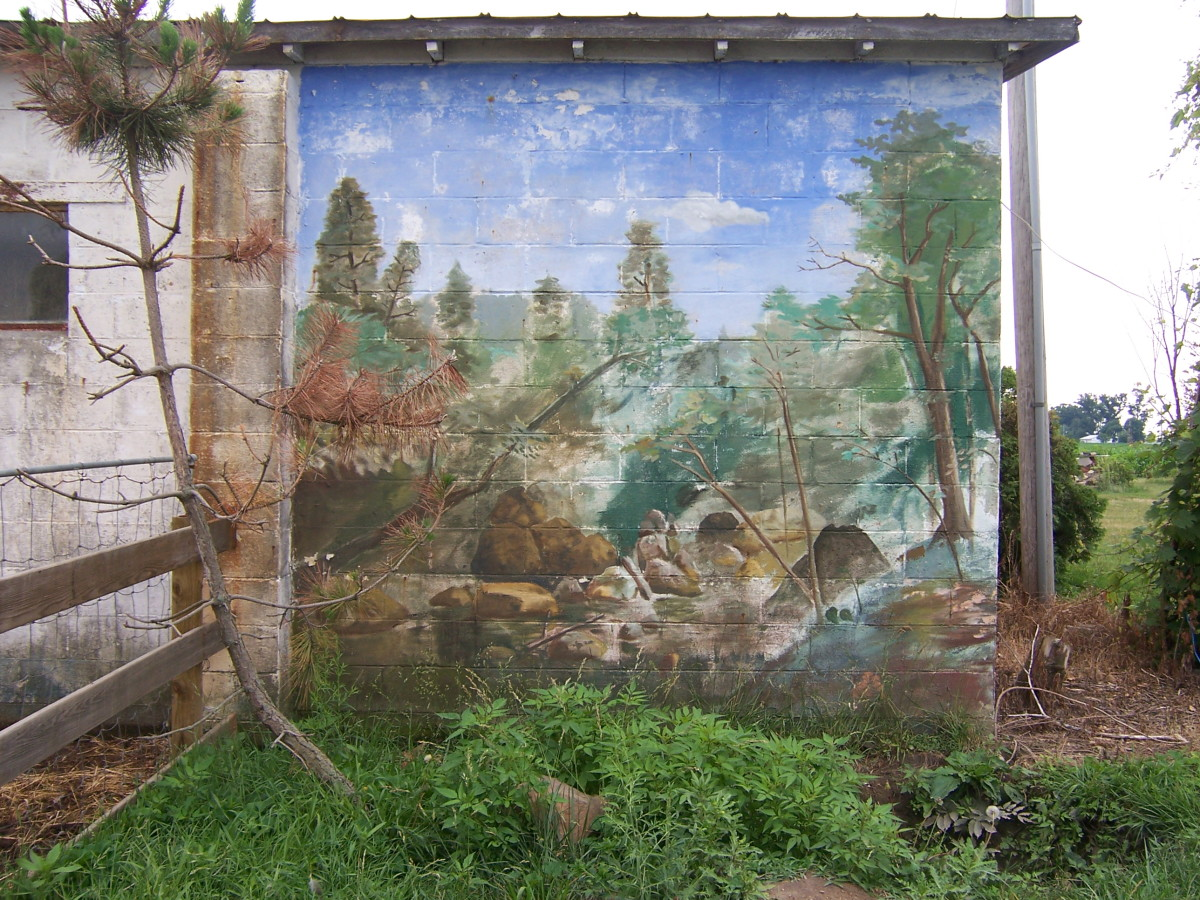 This is a mural my brother painted on his shed. There is a pond in front of it.
