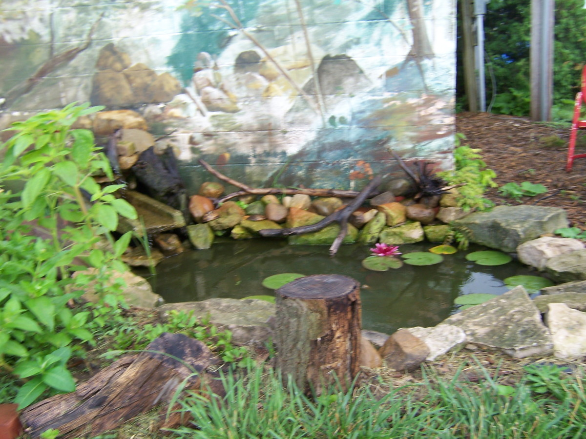 My brother build a pond and made a water garden in front of his mural.