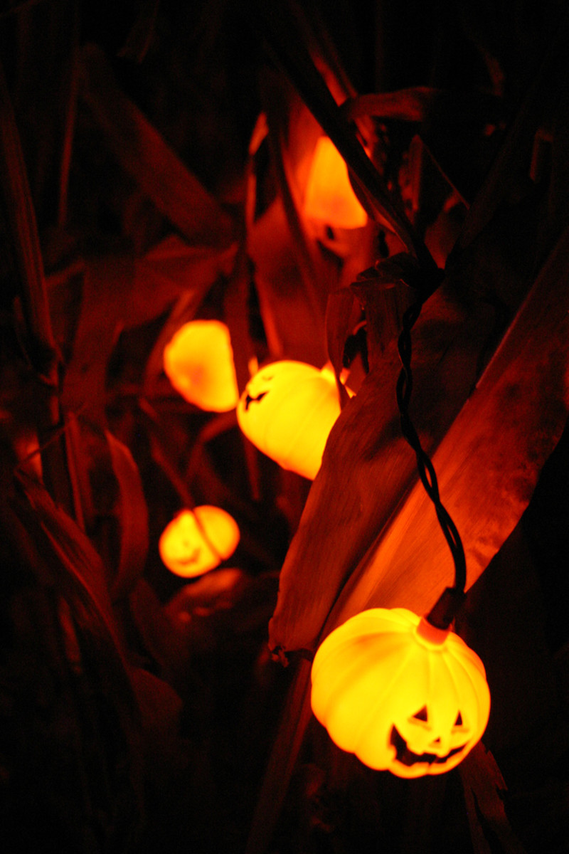 Add fun Halloween lighting to your haunted house for the sake of younger guests!